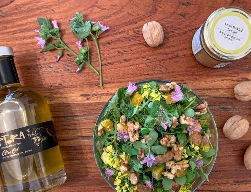 סלט חג אביבי עם מוצרים נבחרים ממארז פסח